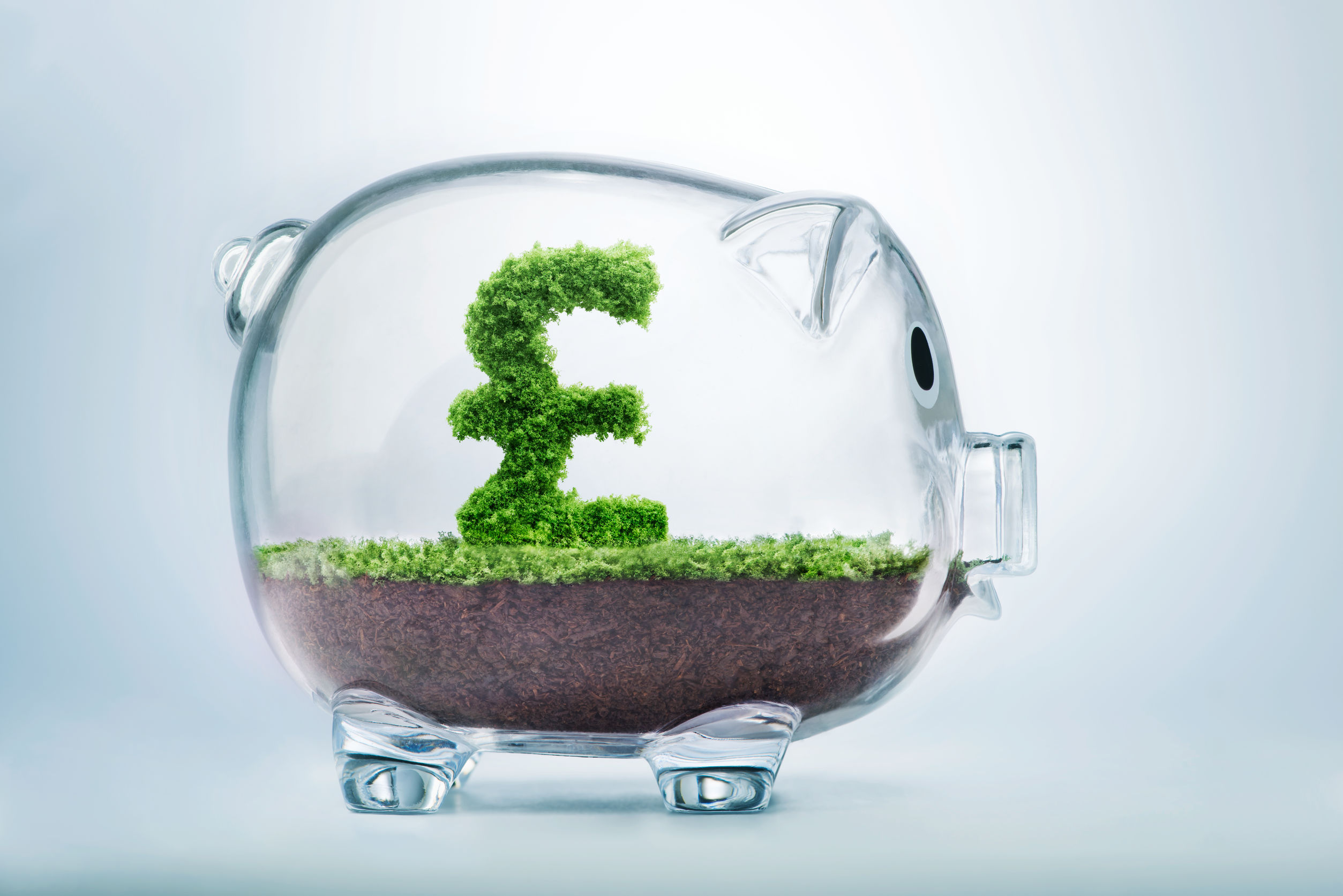 Auto-enrolment for carers – what is it and should you be providing it?